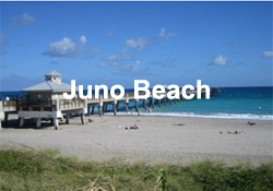 Juno Beach Martin Group Luxury Condos and Homes For Sale FLPalmBeach.com