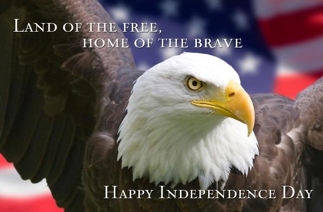 July 4th Bald Eagle Head Flag - flpalmbeach.com Martin Group